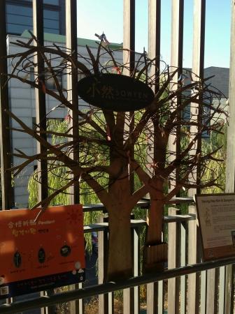 wish: Wish tree