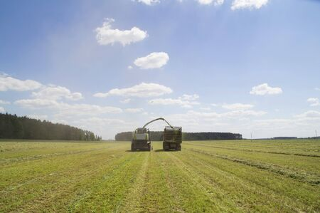 bodywork: The process of harvesting herbs using modern technology