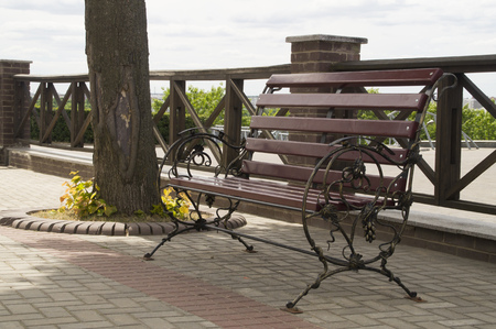 joists: Beautiful wooden bench in a city park