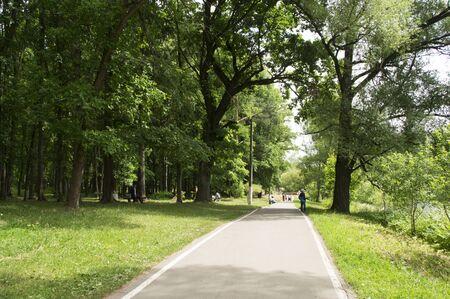 walking path: Walking path in a city park