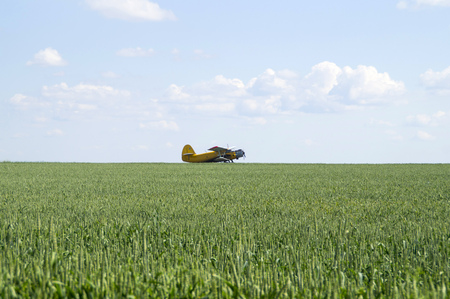 sky and grass: A single-engine plane stands on the field before takeoff