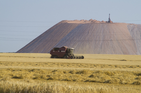 combines: Wheat harvest combines against the mountain of potash Stock Photo