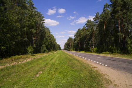 picturesque: Picturesque forest road stretches into the distance on a background of blue sky