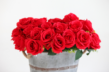 Many red roses in vintage pot on white background with copy space