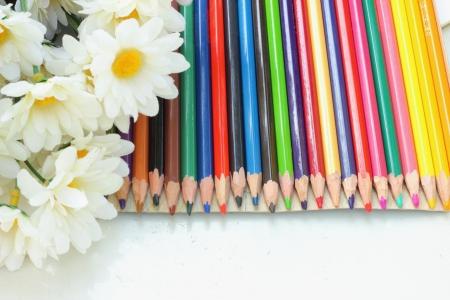 flores color pastel: Pastel flores