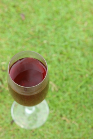 Red wine on the background of green grass