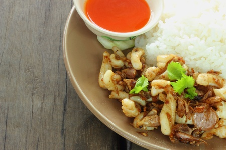 Fried squid with garlic rice with chili sauce  Stock Photo - 16553896