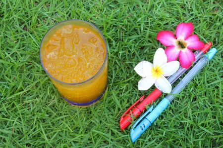 Orange juice with pen on the green grass  photo