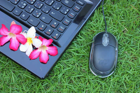 Laptop mouse with flowers on the green grass  photo