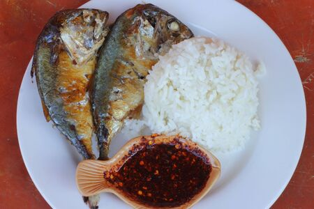 Mackerel fried and rice photo