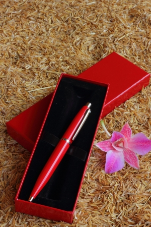 clericalist: Pen laying on the ground rice  Stock Photo
