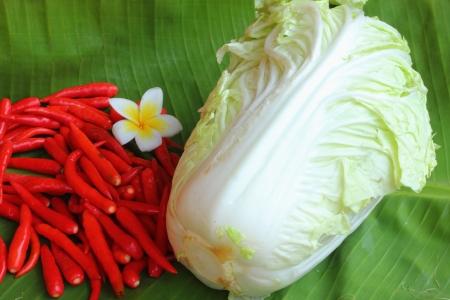 a stem here: Lettuce and zucchini