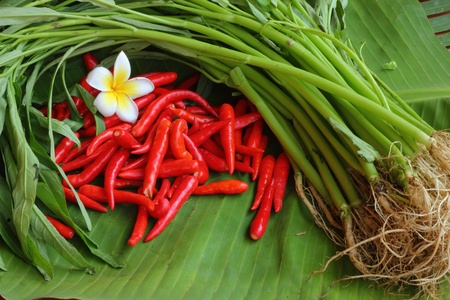 a stem here: The chili and vegetables  Stock Photo