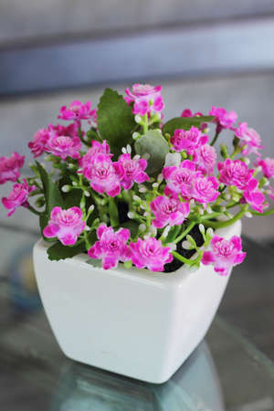 Plastic flower - pink flowers. photo