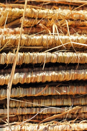 thatched: Thatched roof.