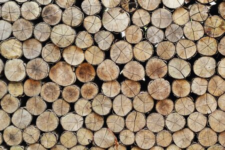 A pile of wood  photo