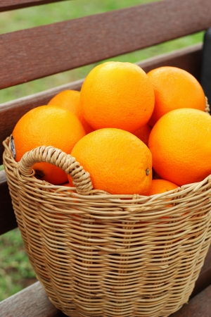 Citrus fruits in the basket. photo