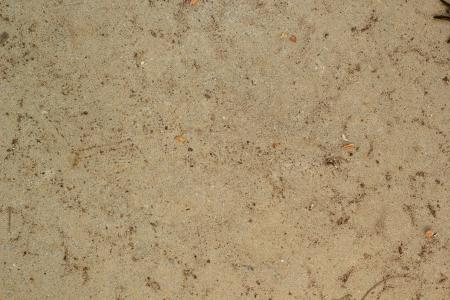suelo arenoso: Fondo de la textura del suelo Foto de archivo