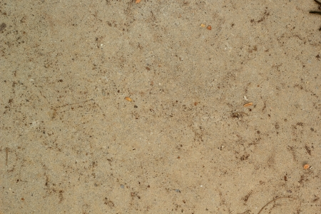 soil texture background photo