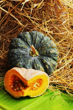 Fresh vegetables - pumpkin. photo