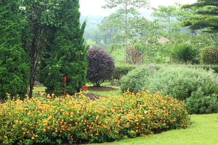 English garden.  Stock Photo - 21473986