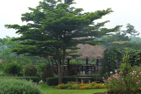 English garden. Stock Photo - 21473989