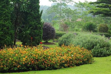 English garden.  Stock Photo - 21474094