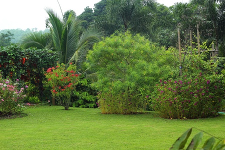 English garden.  Stock Photo - 21474095