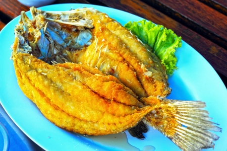 Fried fish with mango salad. Stock Photo - 22359619