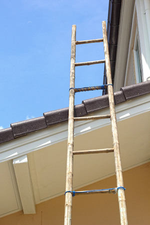 High wooden ladder leaning against the house.