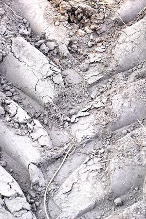Wheel tracks on the soil. Stock Photo - 25001571
