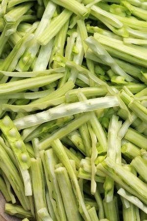 Moringa vegetable in the market photo