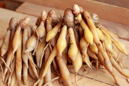 Fingerroot herb in asia - in market photo