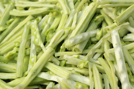 drumstick tree: Moringa vegetable in the market
