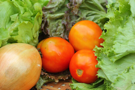Vegetables salad and tomato in the basket Stock Photo