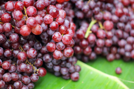 Close up fresh fruit grape in nature Stock Photo