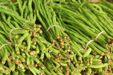long bean: Long bean in the market Stock Photo
