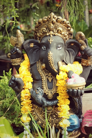 Ganesh statue with the nature photo
