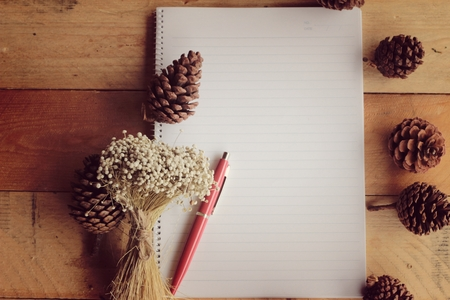 reading materials: Diary book with pine cones on wood background.