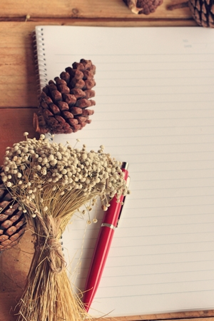 hardcovers: Diary book with pine cones on wood background.