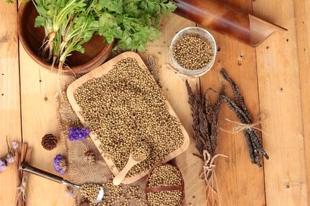 cilantro: Semillas de cilantro seco y verde de cilantro fresco