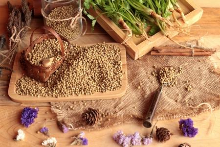 culantro: Dry coriander seeds and fresh coriander green