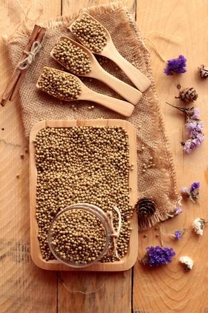 culantro: Semillas de cilantro seco