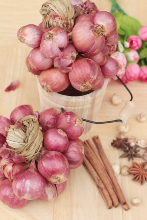 shallot: shallot - asia red onion for at cooking