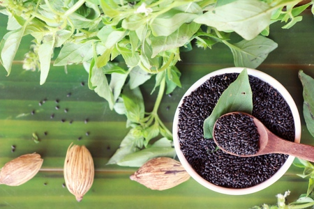 Raw basil seeds for health and basil leaves