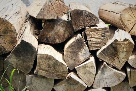 Pile of old firewood background with nature
