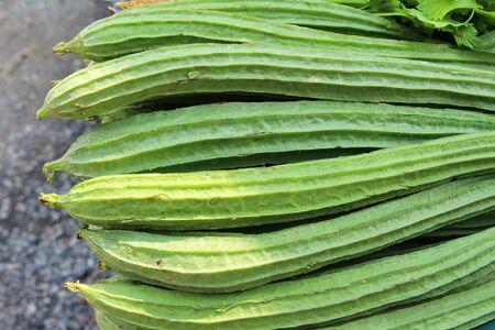 ridged: Fresh luffa acutangula for cooking in market