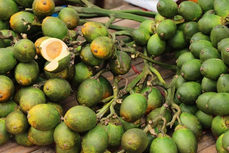 Betel palm with the nature at market