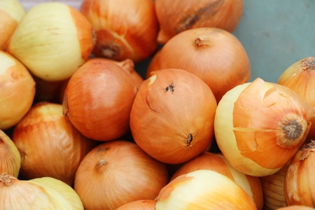 Onions for cooking at market 写真素材