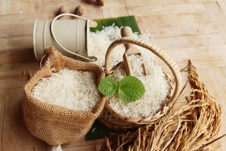 Jasmine rice for cooking and rice for harvest